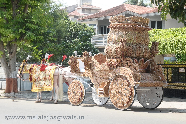 NATURAL KALASH BAGI by Malataj Bagiwala Gujarat