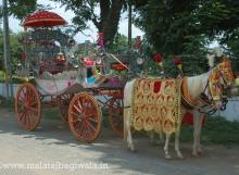 SILVER BAGI by Malataj Bagiwala Anand