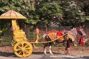 Single Mini Horse Bagi by Malataj Bagiwala