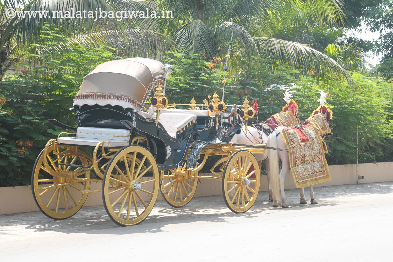 VINTAGE VICTORIA BAGI by Malataj Bagiwala