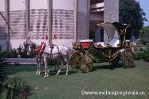 PATIALA GREEN BAGI by Malataj Bagiwala Gujarat