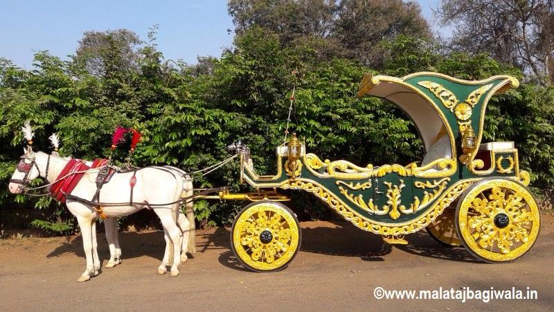 Patiala Green Bagi by Malataj Bagiwala