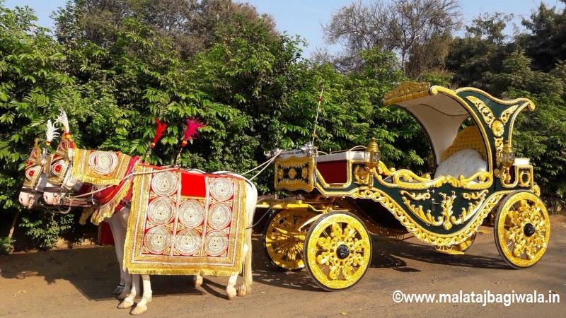 Patiala Green Bagi by Malataj Bagiwala India