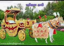 Patiyala Red Bagi (1)